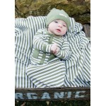 Organic Gown - Sage/White Stripe